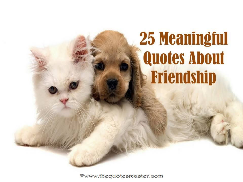 Meaningful Quotes About Friendship Stunning 25 Meaningful Friendship Quotes