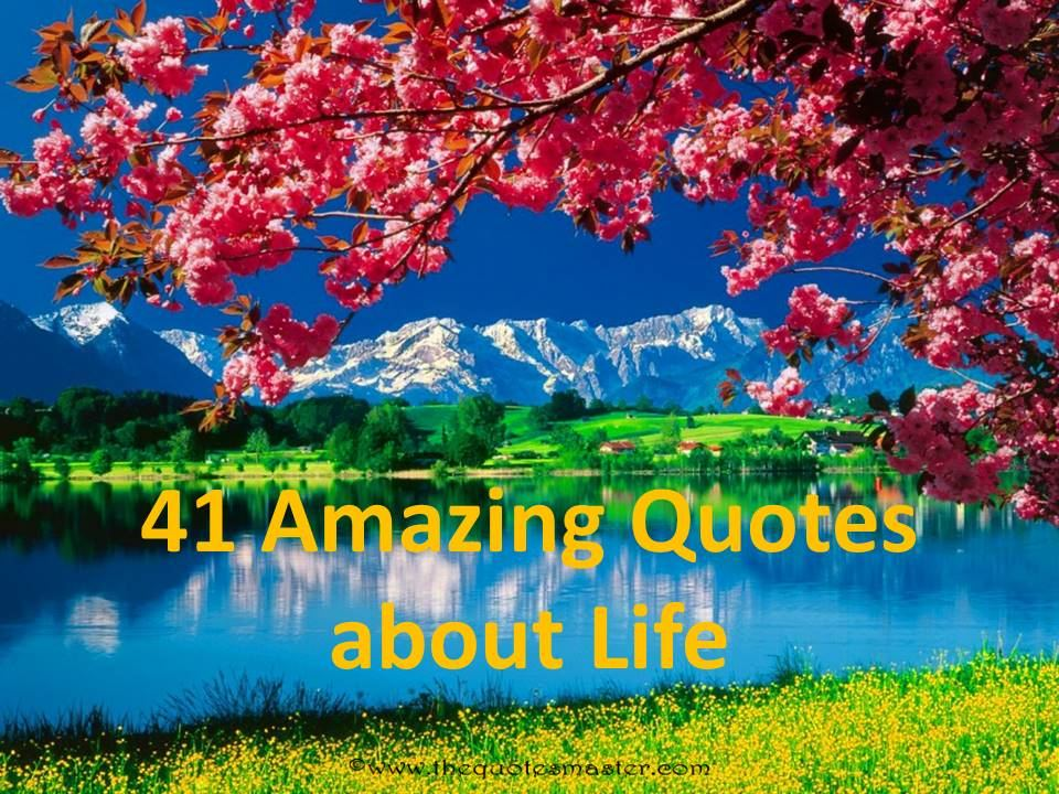 41 Amazing Quotes About Life