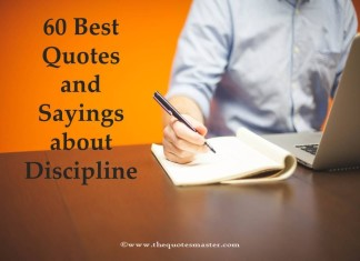 60 Best Quotes and Sayings about Discipline