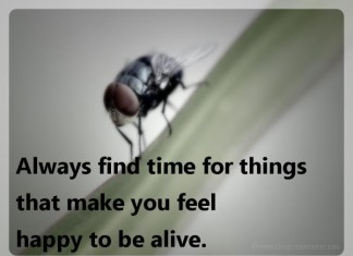 Always find time picture quotes