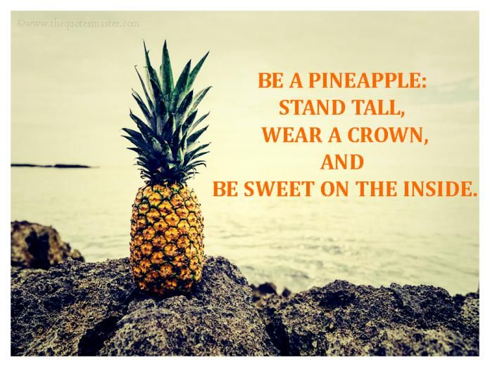Image result for be a pineapple quote