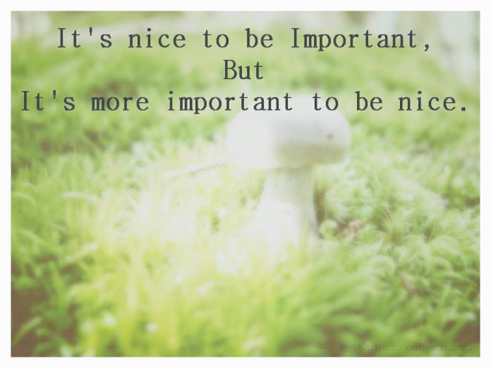 Being Nice Picture Quotes