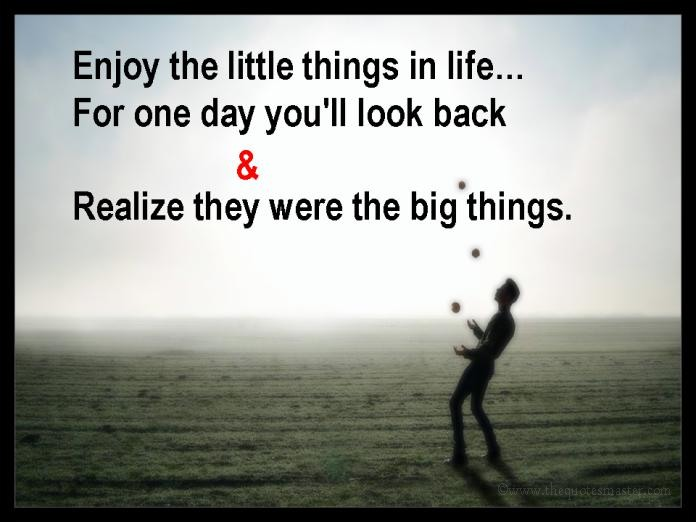 Enjoy the little things in life picture quotes