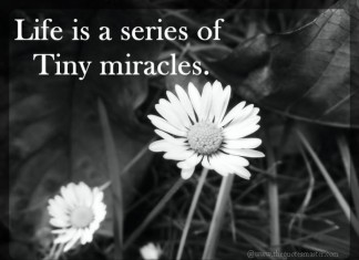 Life is a miracle picture quotes