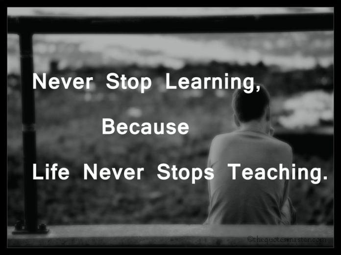 Never Stop Learning Quote Stunning Never Stop Learning.