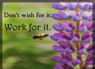 Work for it quotes