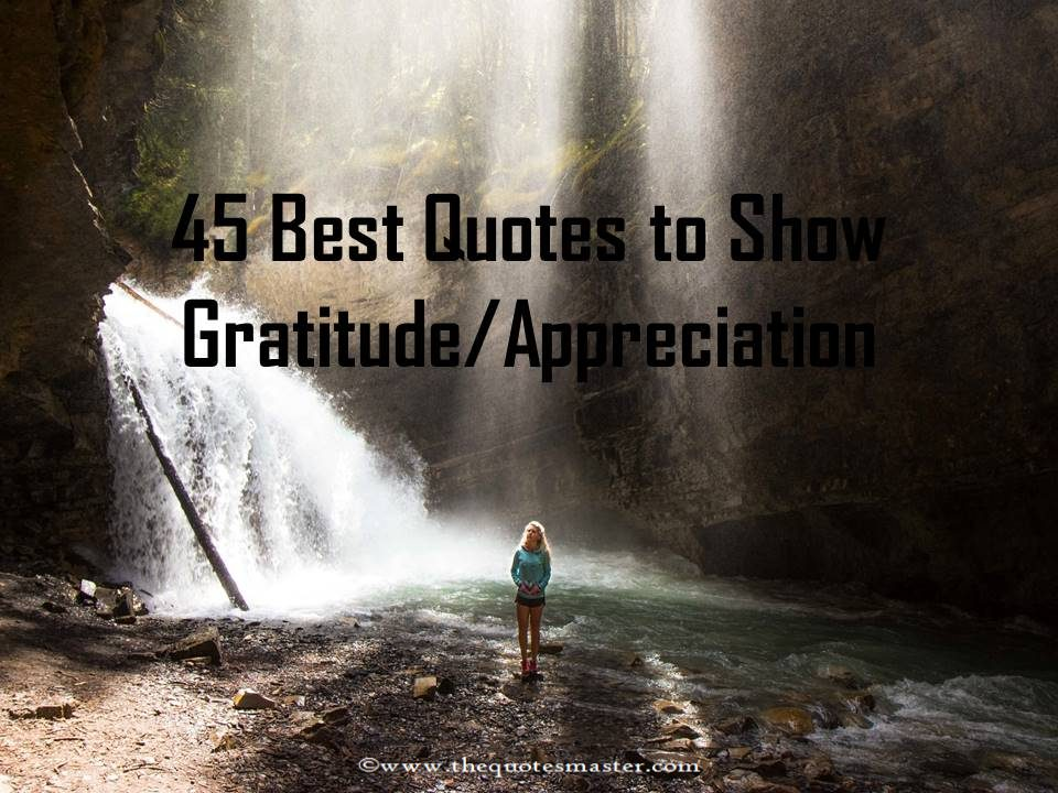 45 Best Quotes about Gratitude/Appreciation