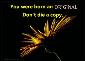Born Original Dont Die Copy Quotes
