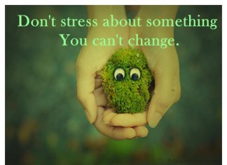 Dont Stress What you cant change quotes
