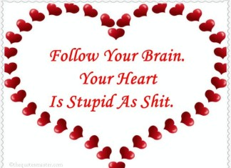 Follow your brain and not heart quotes