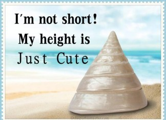 I am not short Quotes