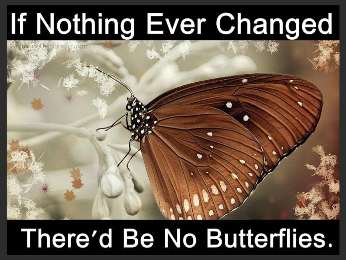 Nothing ever change quotes