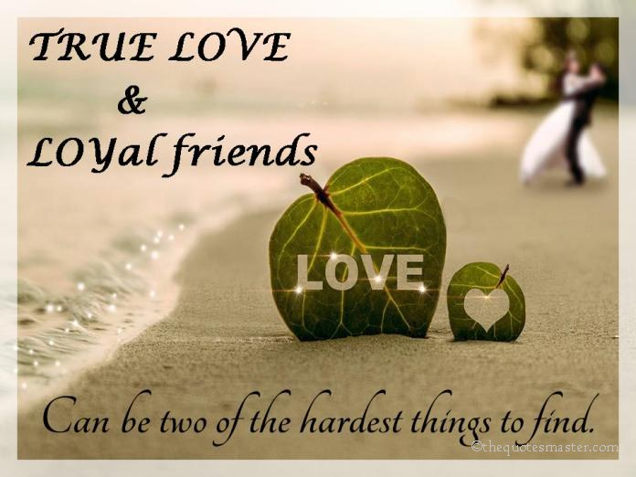 Love And Friendship Quotes Awesome True Love Loyal Friends
