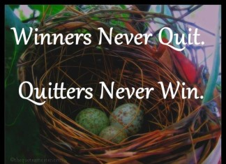 Winner never quit quotes