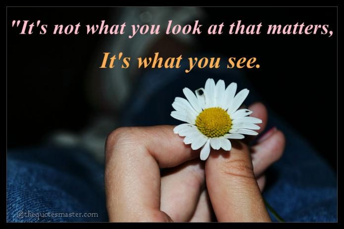 What you see matters Quote