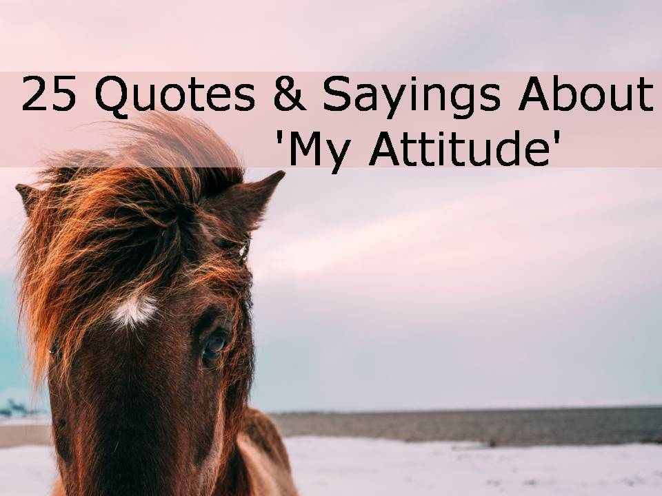 25 Quotes & Sayings About 'My Attitude'