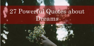 27 Powerful Quotes about Dreams