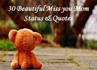 30 Beautiful Miss you Mom Status & Quotes