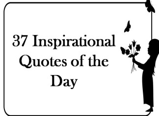 37 Inspirational Quotes of the Day