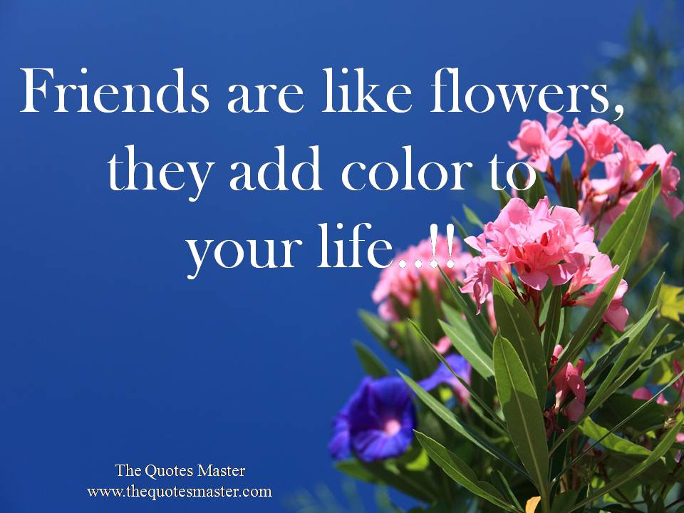 Friendship like flower quotes fresh flower bouquets - Flowers that mean friendship ...