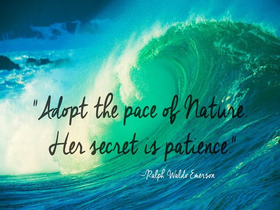 Ralph Waldo Emerson The Quotes Master Nature Quotes Fb 121