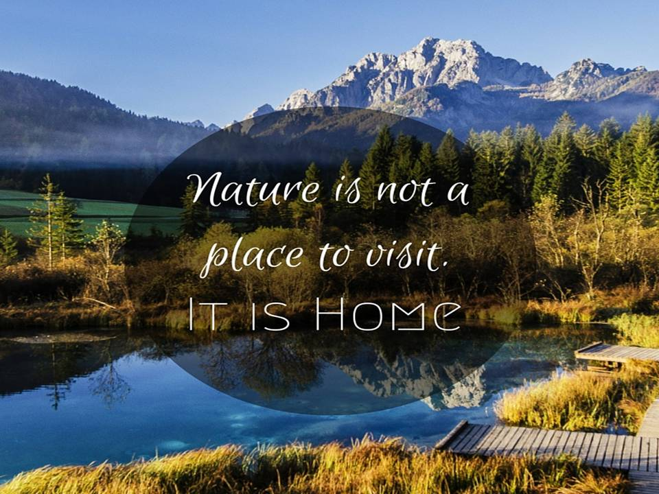 beautiful captions for nature photography