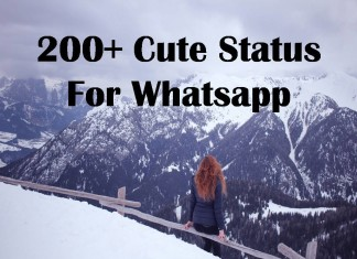 200+ Cute Status For Whatsapp