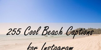255 Cool Beach Captions for Instagram