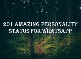 201 Amazing Personality Status for Whatsapp