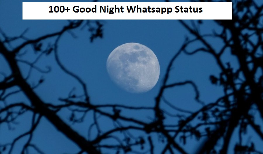 100 Good Night Whatsapp Status
