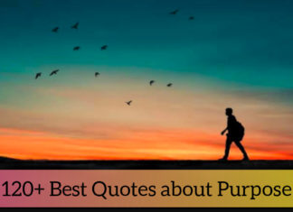 120 Best Quotes About Purpose