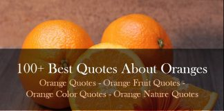 Best Quotes About Oranges