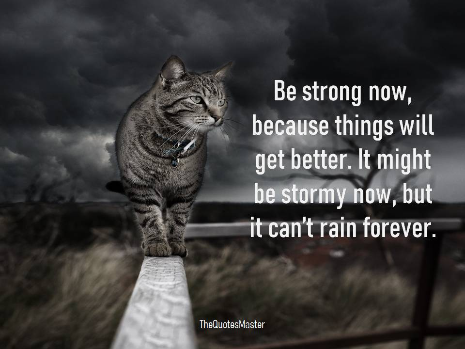 Be strong things will get better