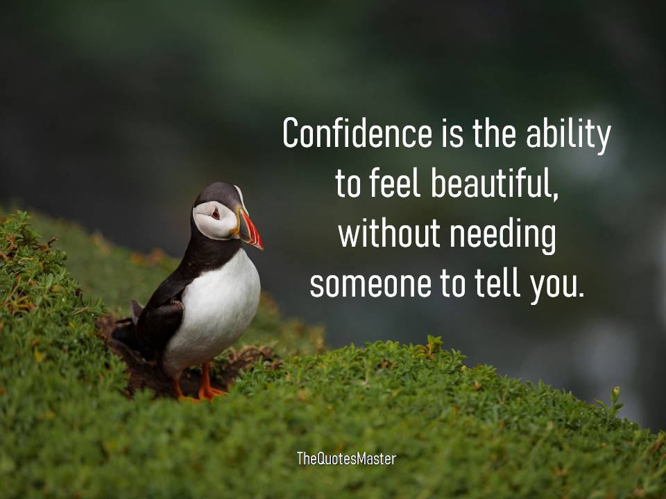 Confidence is the ability to feel beautiful