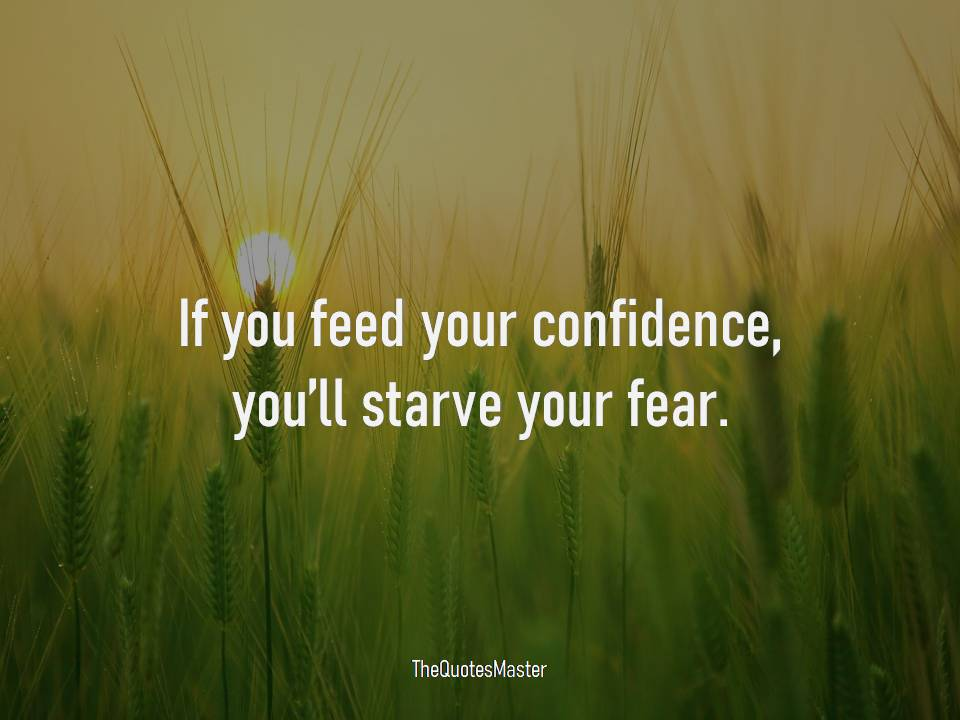 Feed your confidence