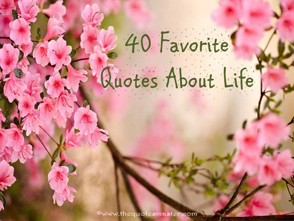 40 favorite quotes about life