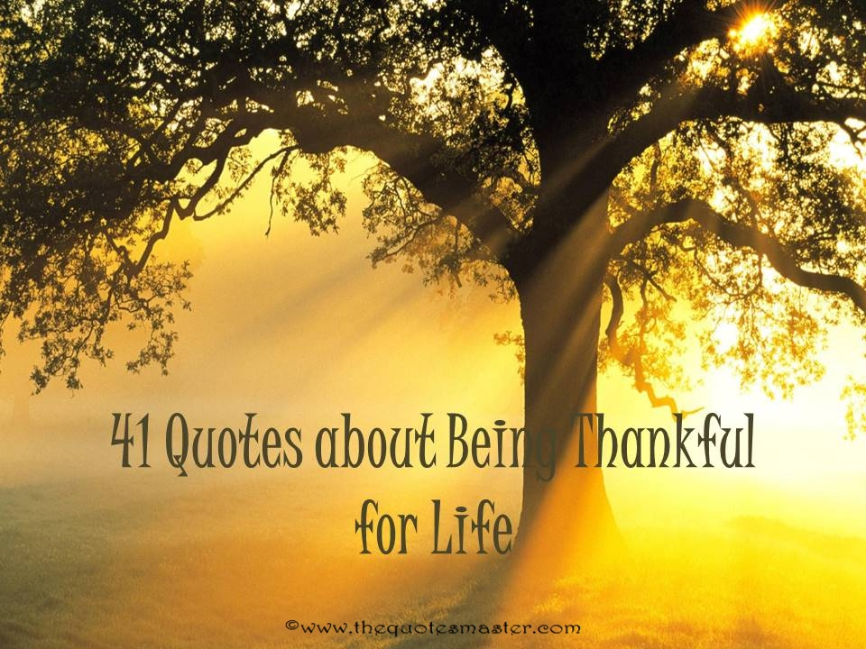41 quotes about being thankful for life