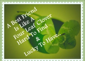 Friends Quotes Picture