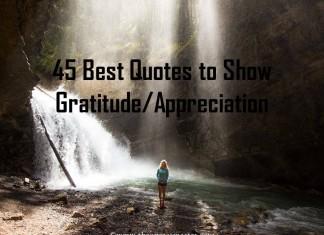 45 Best Quotes about Gratitude/Appreciation