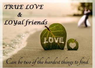 True Love and Friendship Quotes