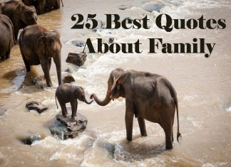 25 Best Quotes About Family
