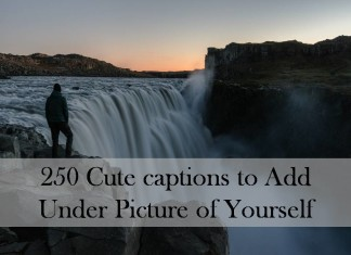 250 Cute captions to Add Under Picture of Yourself