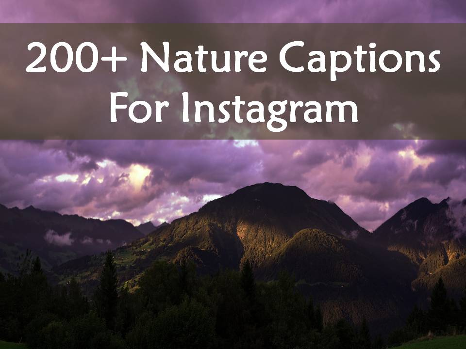 200 Nature Captions For Instagram