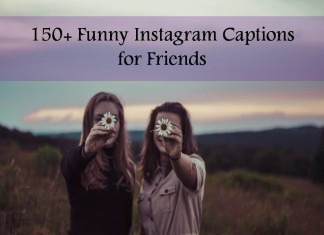 150+ Funny Instagram Captions for Friends