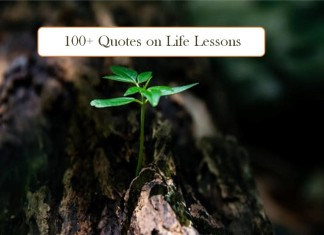 Short Quotes on Life Lesson