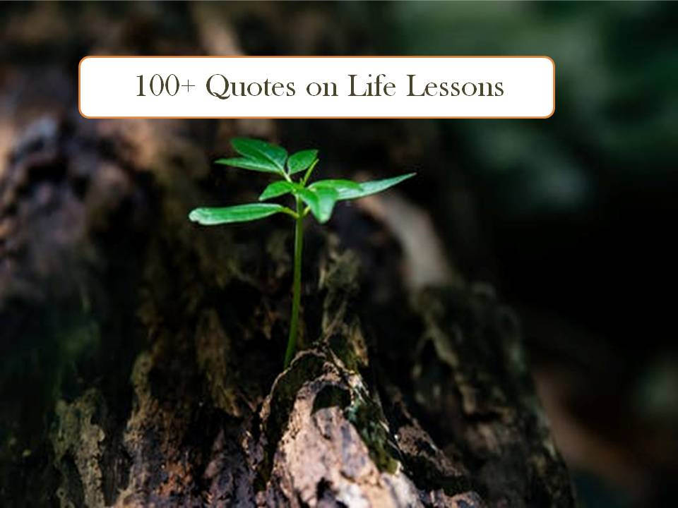 Quotes On Life Lessons 100+ Short Quotes About Life Lessons Quotes On Life Lessons